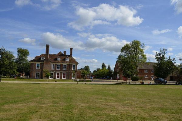 Moyles Court School